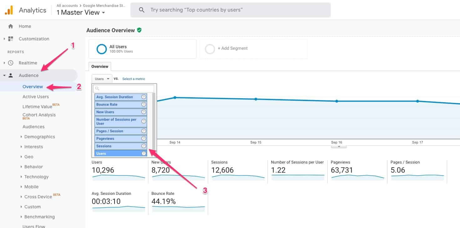 Audience > Overview > Sessions in Google Analytics