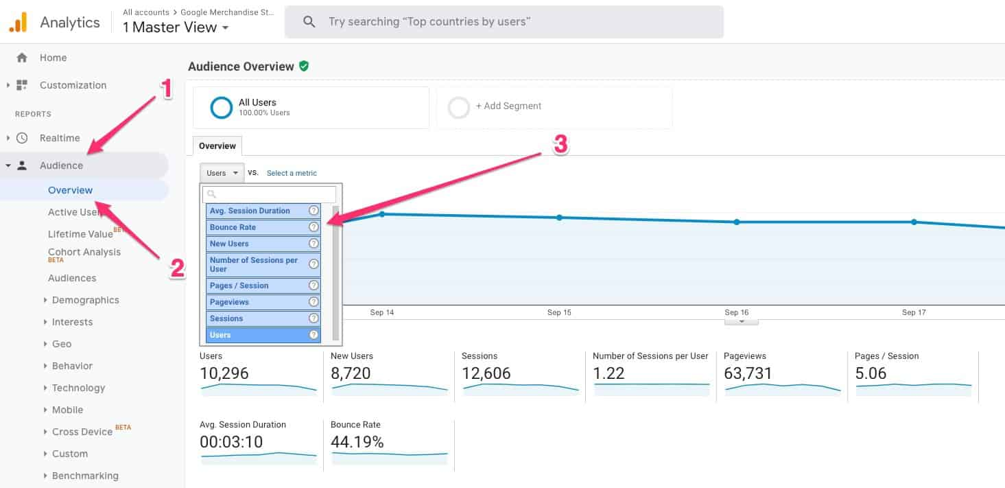 Audience > Overview > Bounce Rate in Google Analytics