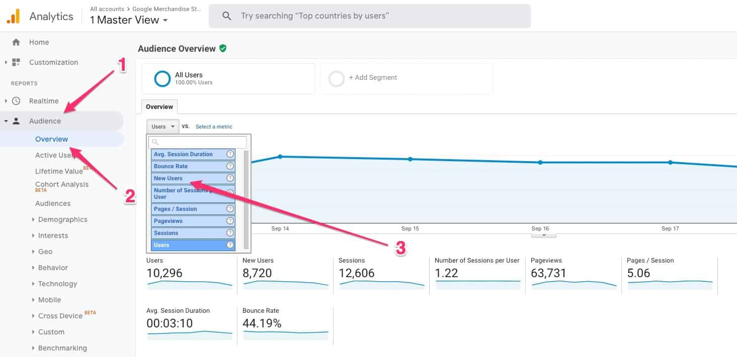 Audience > Overview > NewUsers in Google Analytics