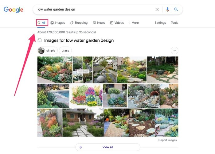 images show up in over 30% of all Google searches