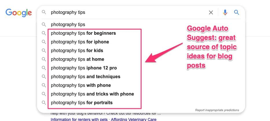 Google Auto Suggest - source of topic ideas for blog posts